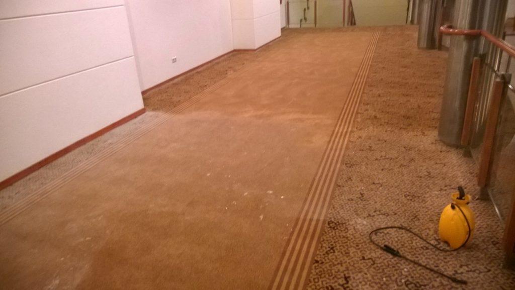Pranie dywanów łódź - mobilnamyjnialodz.pl